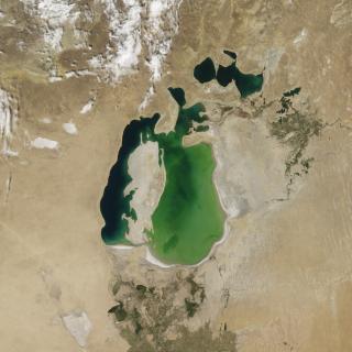 Aral Sea, NASA obs.
