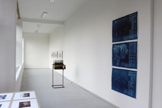 Paul Chaney, Exit Lizard Land and Robert Vlasák, installation view, Jáchym Myslivec