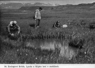 1948, Czechoslovak Expedition to Iceland