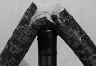 Elvar Már Kjartansson, Crushing Birch. Video still, documentation of work in progress, 2015.