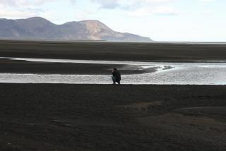 In the Héraðsflói estuary. Photo: Lisa Paland, 2015.