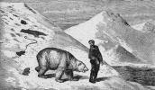 """Julius von Payer: """"Klentzer in Gesellschaft eines Bären"""","""